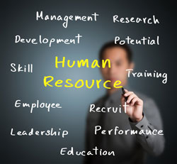 Human Resources it majors